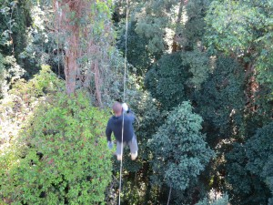 Sam Zip-wiring