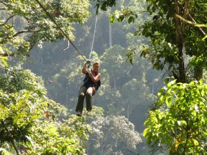 Katy Zip-wiring